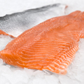 http://www.indomaguro.co.id/salmon/salmon-fillet